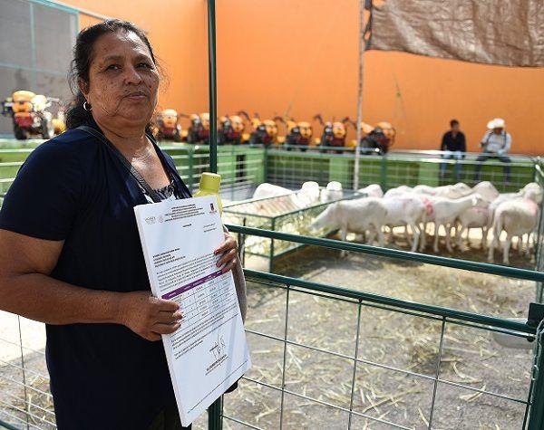 El gobernador Graco Ramírez afirmó que los programas sociales, como la Beca Salario, Crédito a la Palabra y Empresas de la Mujer Morelense, continuarán durante todo 2018