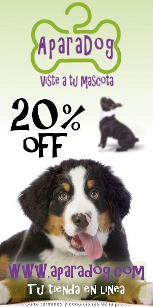 Aparadog Tienda De Ropa y Accesorios Para Mascotas