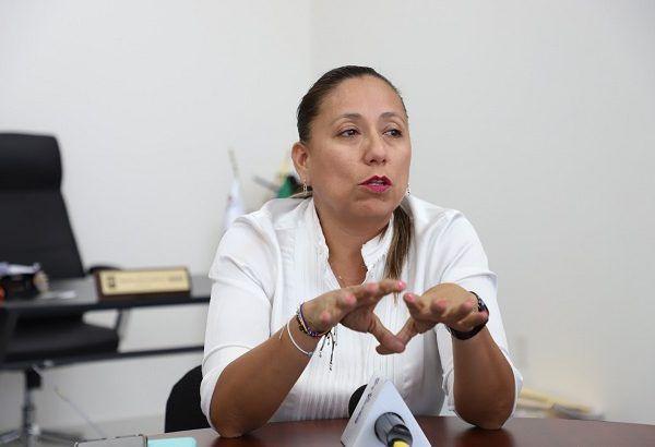 La también presidenta de la Comisión de Desarrollo Económico del Congreso dijo que es urgente que los poderes Ejecutivo y Legislativo trabajen de la mano con los empresarios para prevenir el cierre de negocios por la contingencia de salud